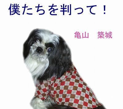 s-hyoushi20bokutachi-thumbnail2.jpg