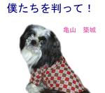 hyoushi bokutachi.jpg